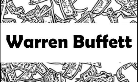 Warren Buffett Portfolio Investment
